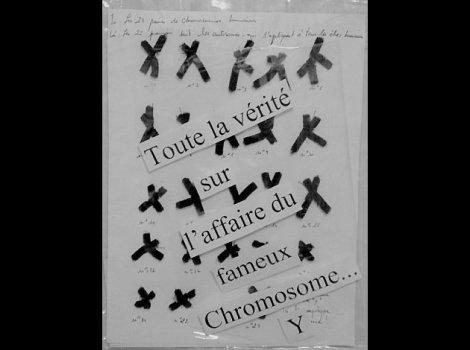 y chromosome 2