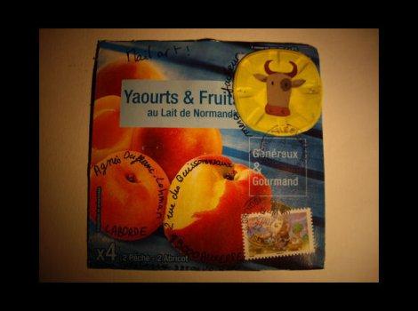 Y-yaourt