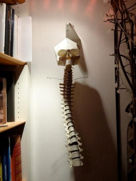 squelette tête colonne 1