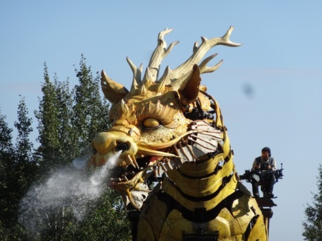 2015 08 Nantes dragon 14