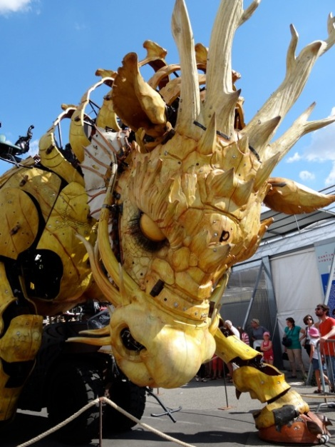2015 08 nantes dragon 4