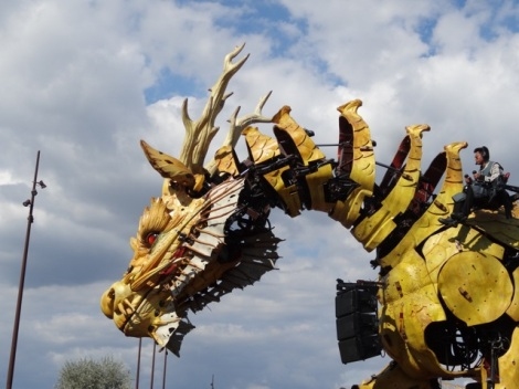 2015 08 nantes dragon 8
